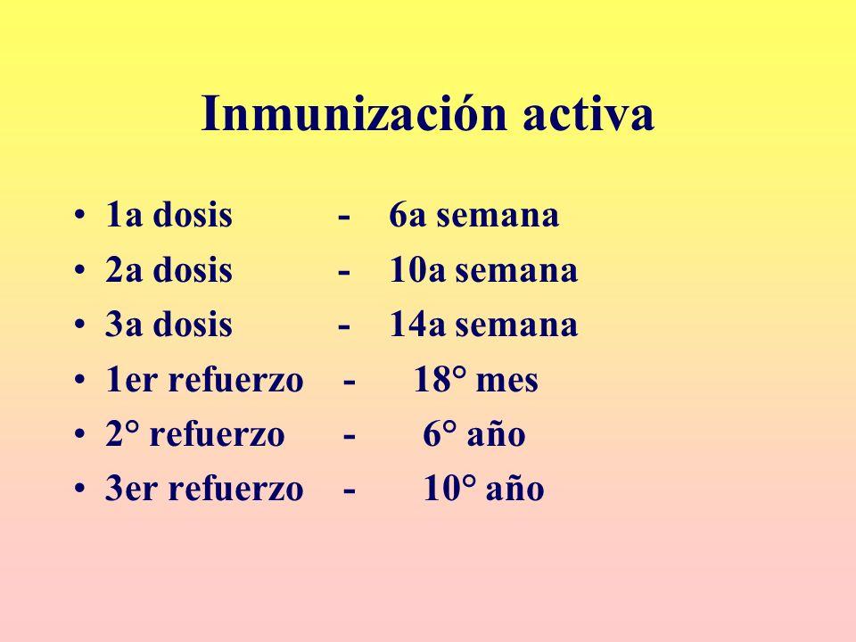 Inmunización activa 1a dosis - 6a semana 2a dosis - 10a semana