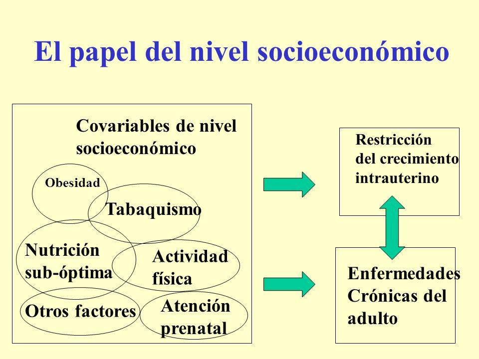 El papel del nivel socioeconómico