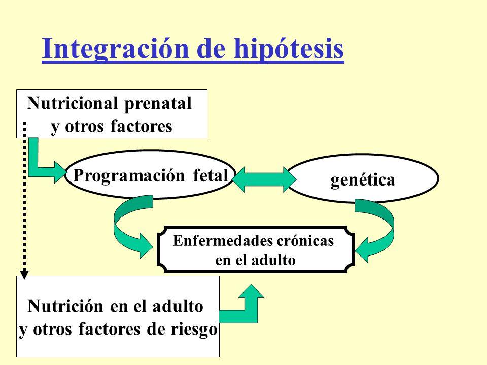 Integración de hipótesis