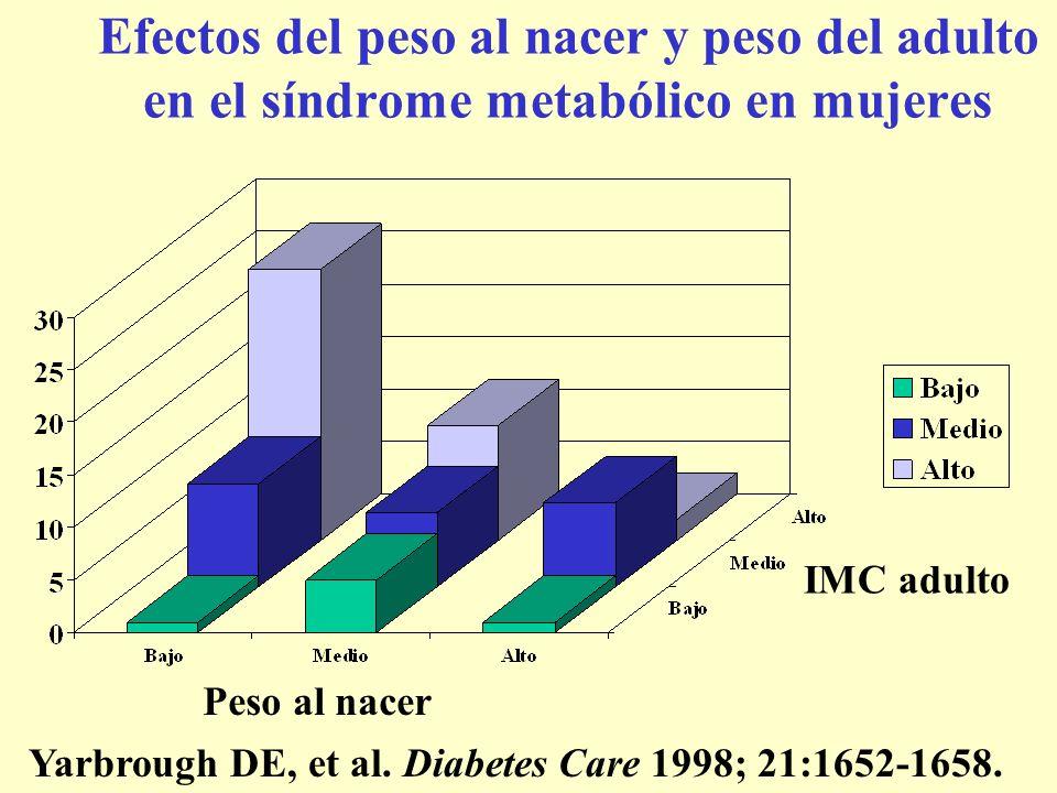 Efectos del peso al nacer y peso del adulto en el síndrome metabólico en mujeres