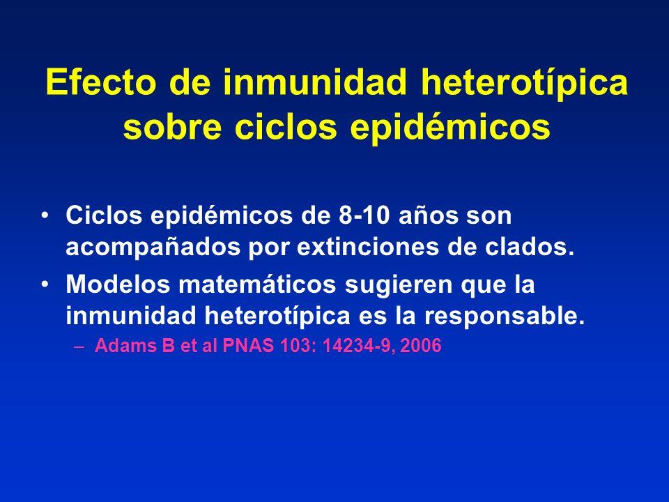 Efecto de inmunidad heterotípica sobre ciclos epidémicos
