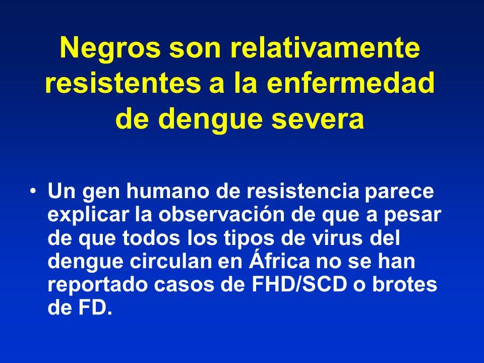 Negros son relativamente resistentes a la enfermedad de dengue severa