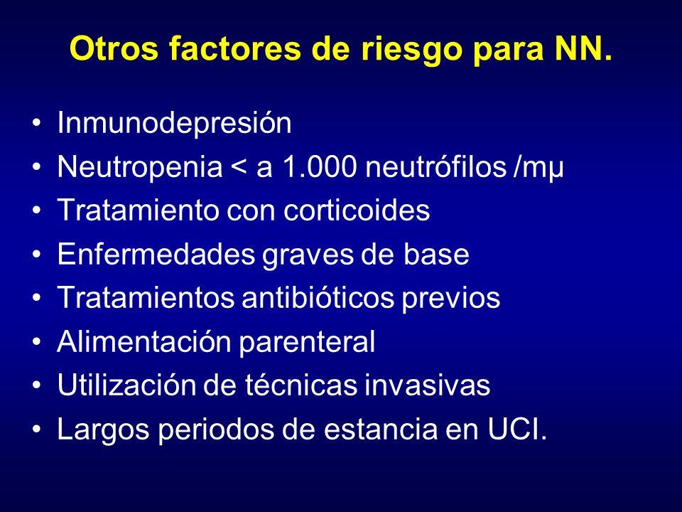 Otros factores de riesgo para NN.