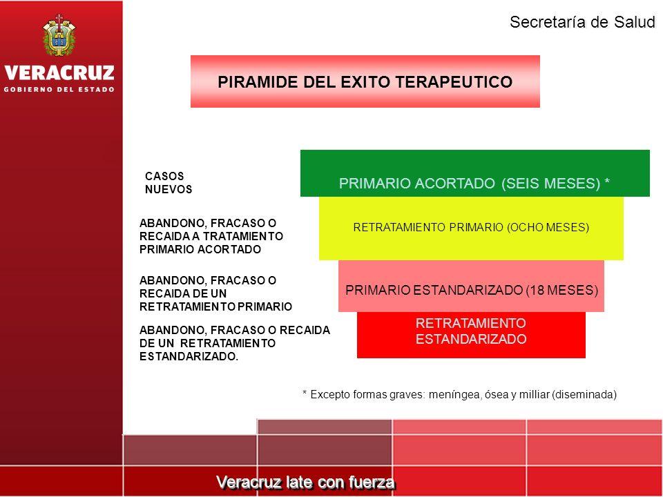 PIRAMIDE DEL EXITO TERAPEUTICO