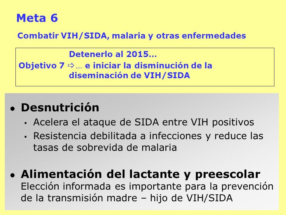 Meta 6 Combatir VIH/SIDA, malaria y otras enfermedades. Detenerlo al 2015… Objetivo 7  … e iniciar la disminución de la diseminación de VIH/SIDA.
