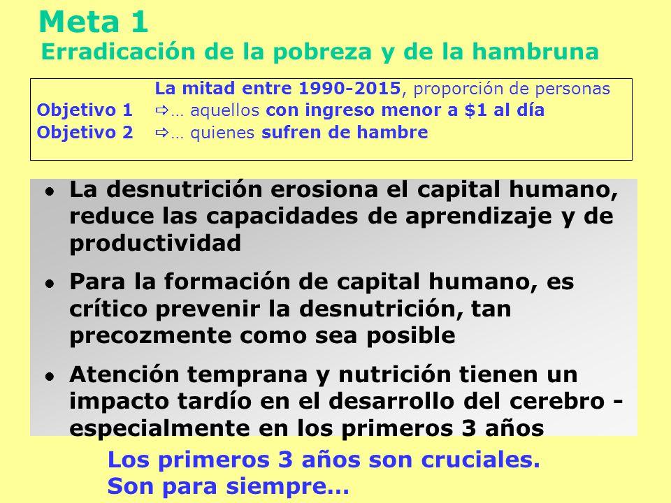 Meta 1 Erradicación de la pobreza y de la hambruna