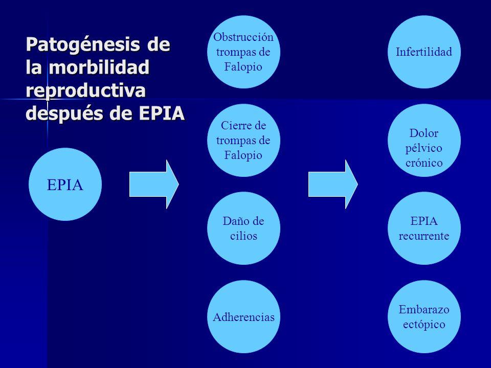 Patogénesis de la morbilidad reproductiva después de EPIA