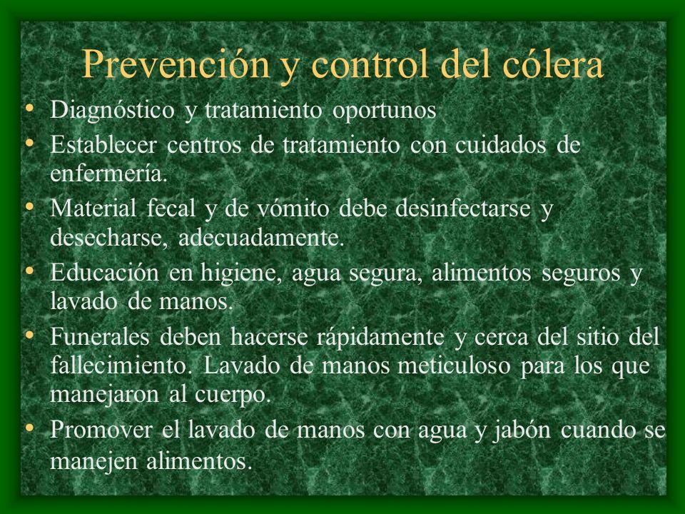 Prevención y control del cólera