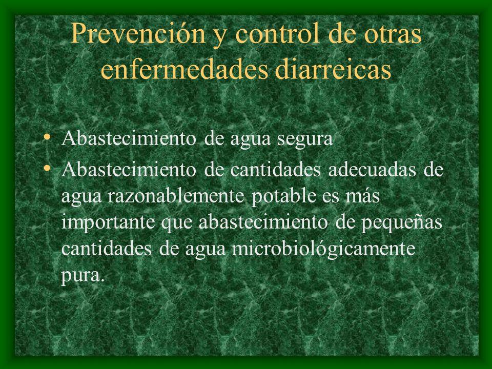 Prevención y control de otras enfermedades diarreicas