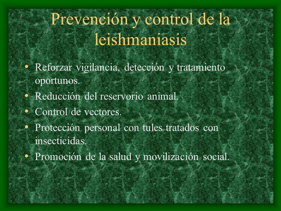 Prevención y control de la leishmaniasis