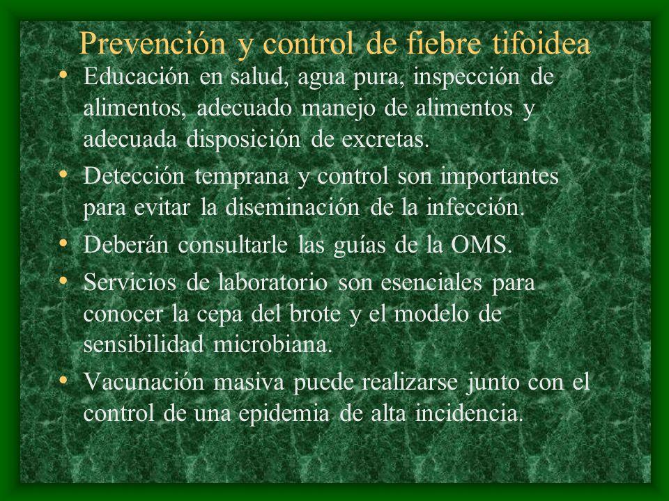 Prevención y control de fiebre tifoidea