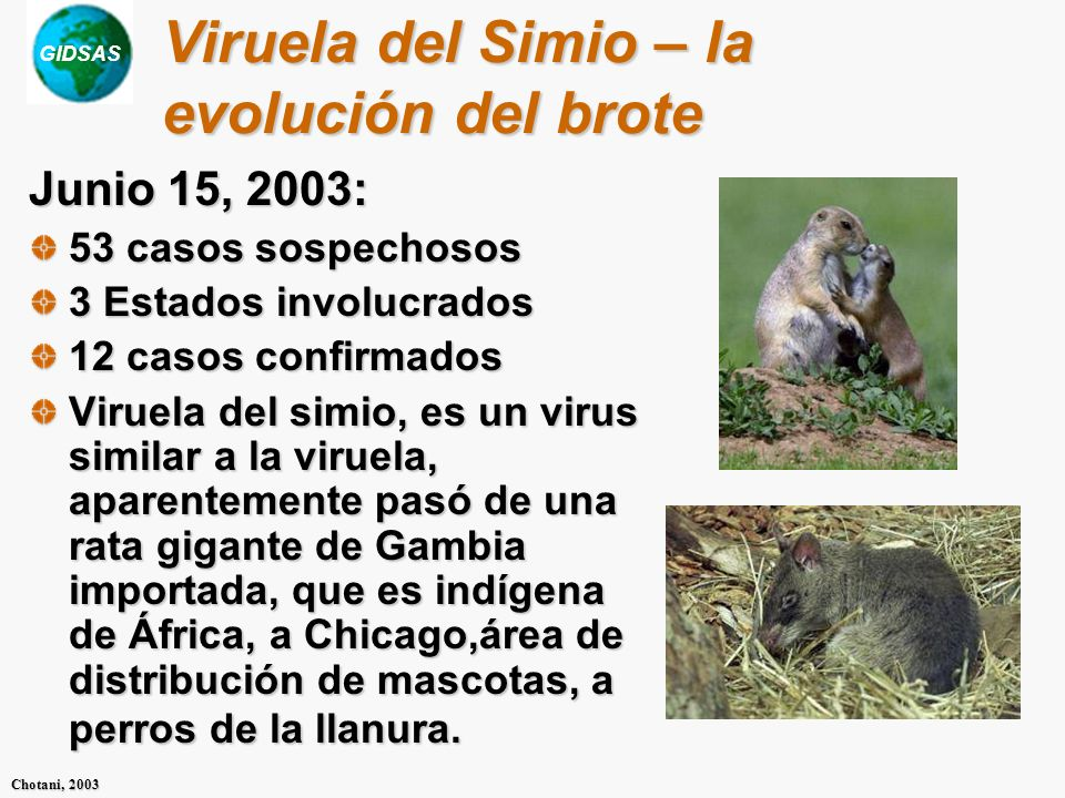 Viruela del Simio – la evolución del brote