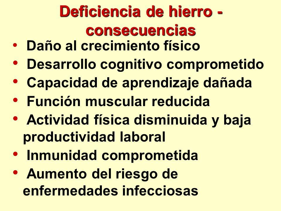 Deficiencia de hierro - consecuencias
