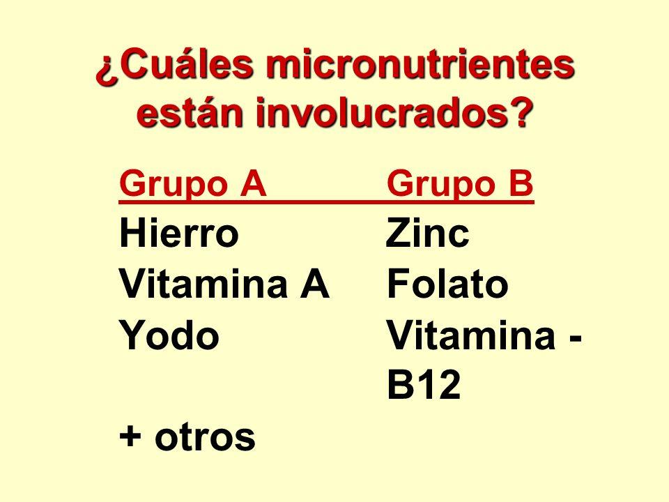¿Cuáles micronutrientes están involucrados