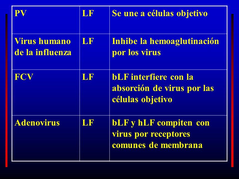 PV LF. Se une a células objetivo. Virus humano de la influenza. Inhibe la hemoaglutinación por los virus.