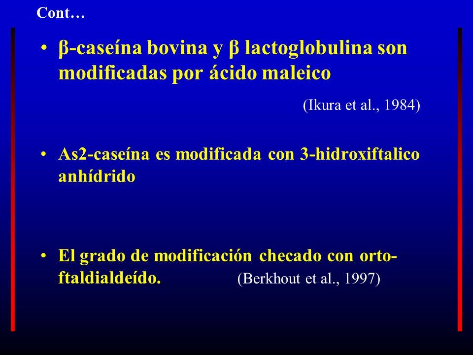 β-caseína bovina y β lactoglobulina son modificadas por ácido maleico