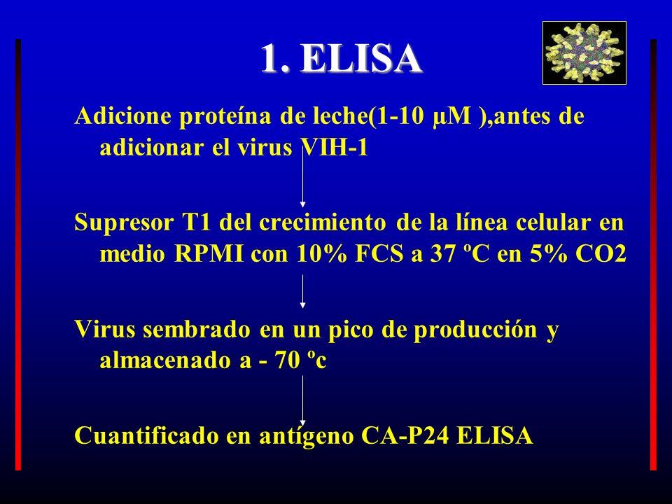 1. ELISA Adicione proteína de leche(1-10 µM ),antes de adicionar el virus VIH-1.