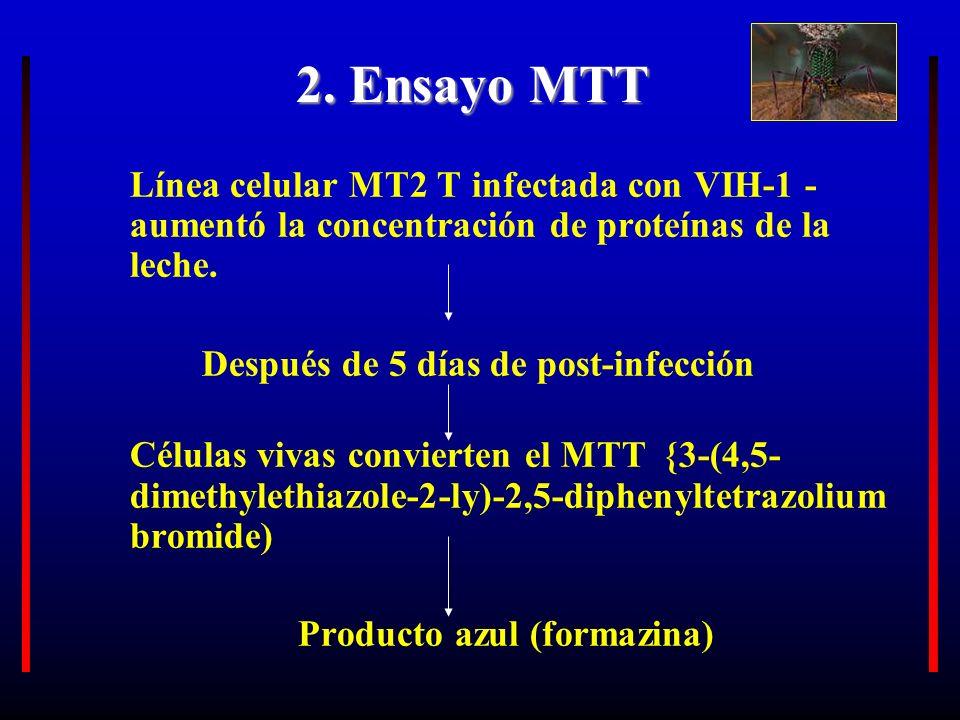 2. Ensayo MTT Línea celular MT2 T infectada con VIH-1 - aumentó la concentración de proteínas de la leche.
