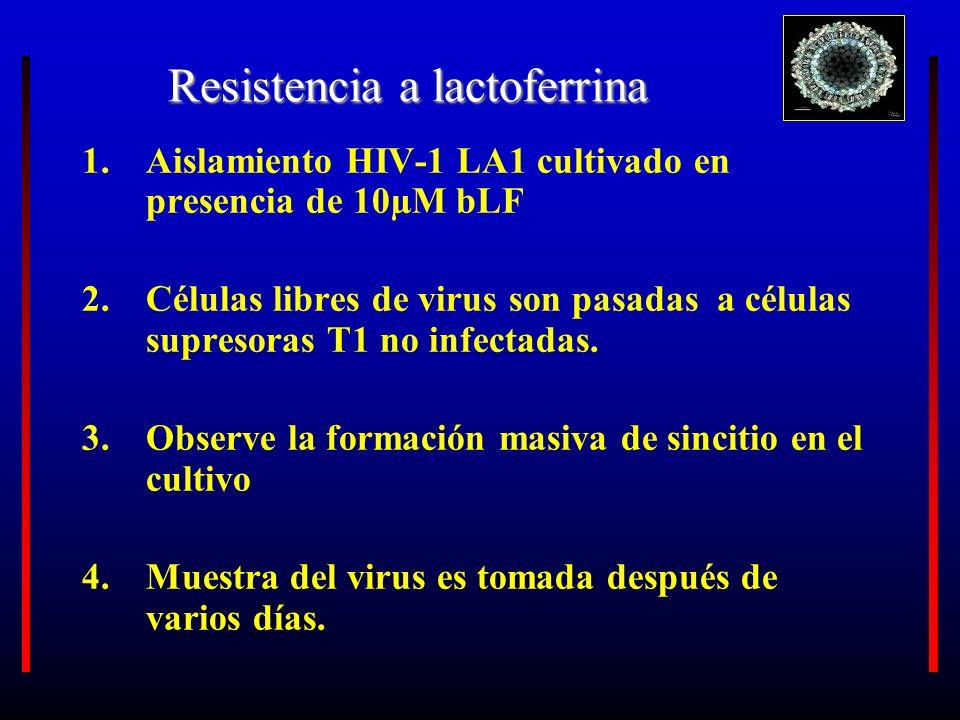 Resistencia a lactoferrina