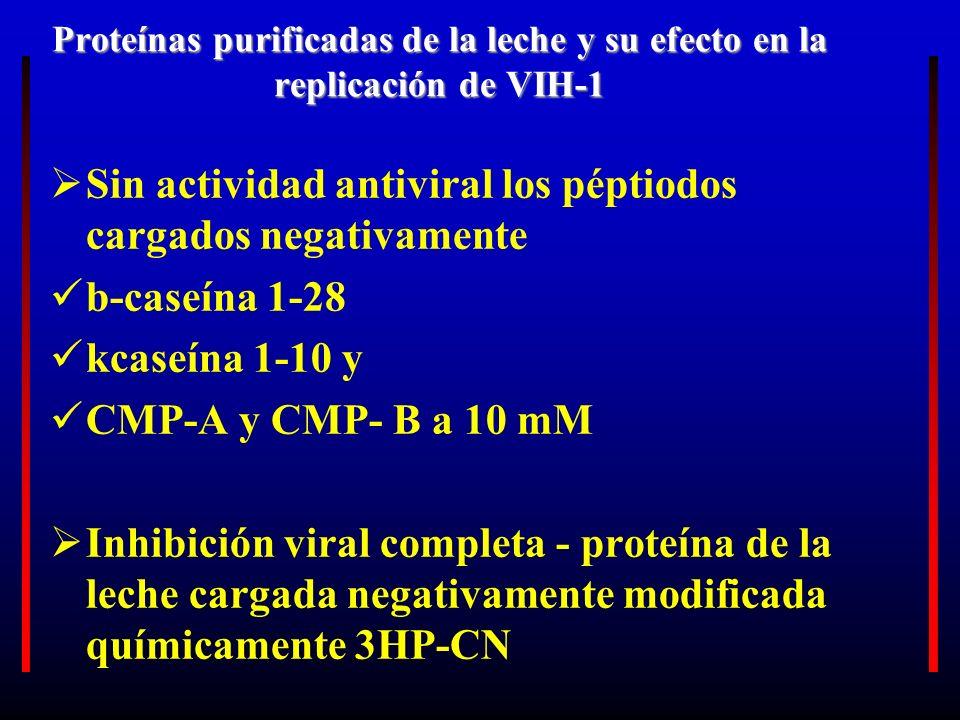Sin actividad antiviral los péptiodos cargados negativamente