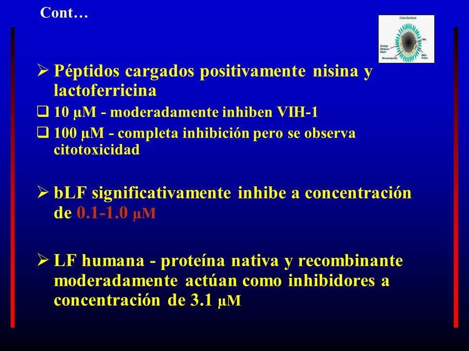 Péptidos cargados positivamente nisina y lactoferricina