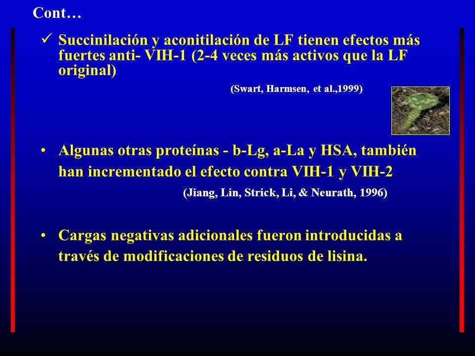 Cont… Succinilación y aconitilación de LF tienen efectos más fuertes anti- VIH-1 (2-4 veces más activos que la LF original)