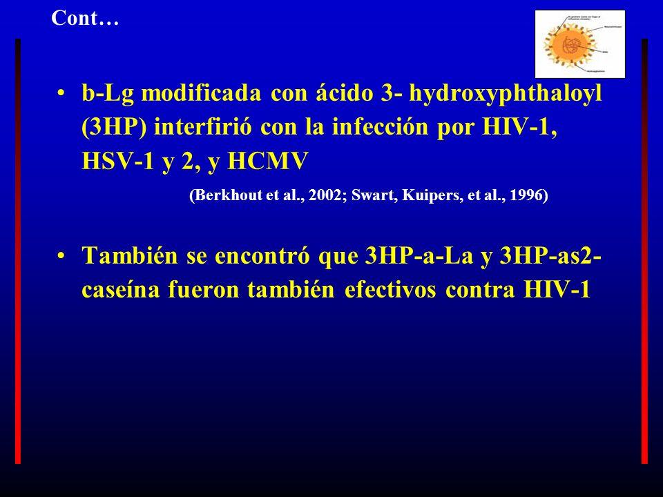 Cont… b-Lg modificada con ácido 3- hydroxyphthaloyl (3HP) interfirió con la infección por HIV-1, HSV-1 y 2, y HCMV.