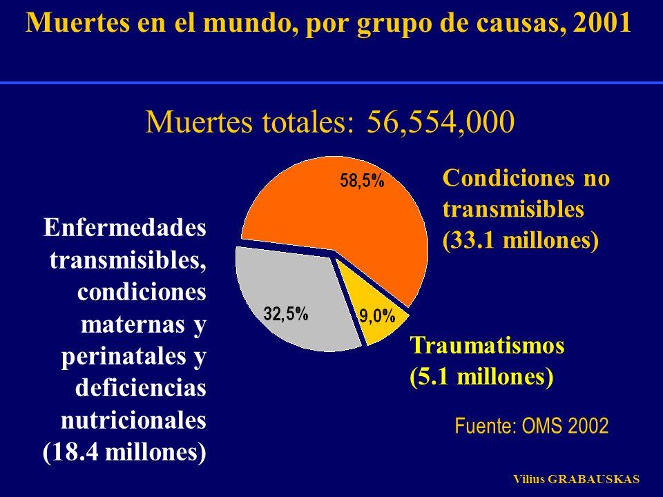 Muertes en el mundo, por grupo de causas, 2001