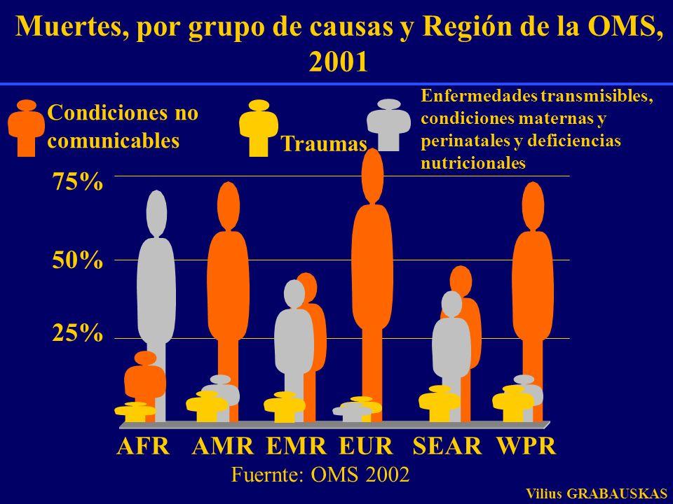 Muertes, por grupo de causas y Región de la OMS, 2001