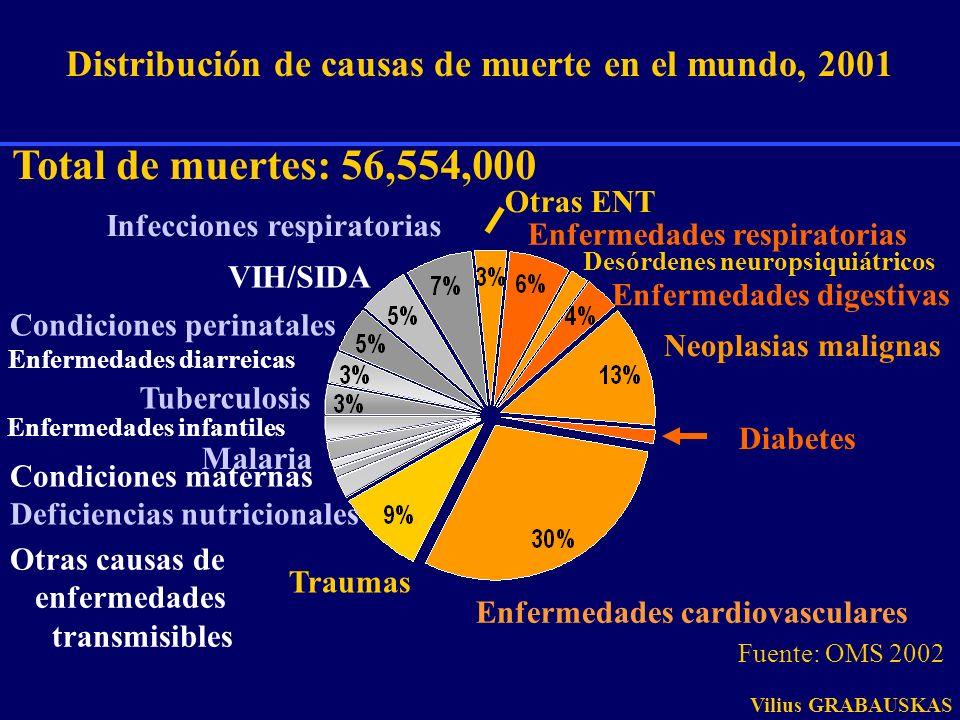 Distribución de causas de muerte en el mundo, 2001