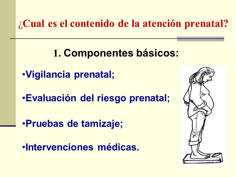 ¿Cual es el contenido de la atención prenatal