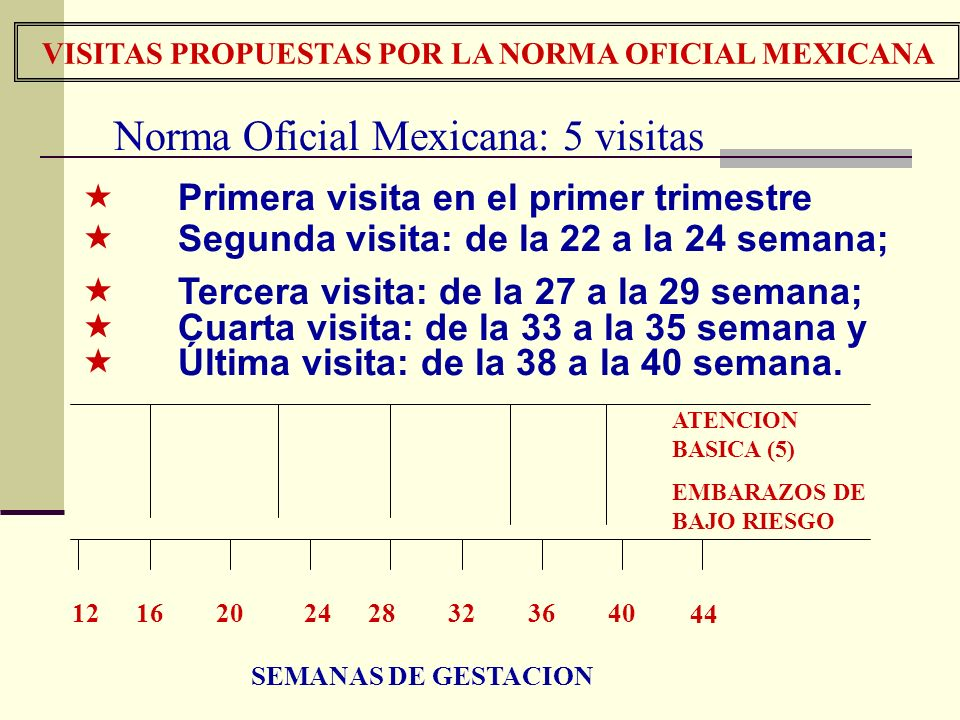 VISITAS PROPUESTAS POR LA NORMA OFICIAL MEXICANA