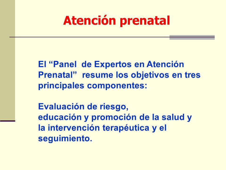 Atención prenatal El Panel de Expertos en Atención Prenatal resume los objetivos en tres principales componentes: