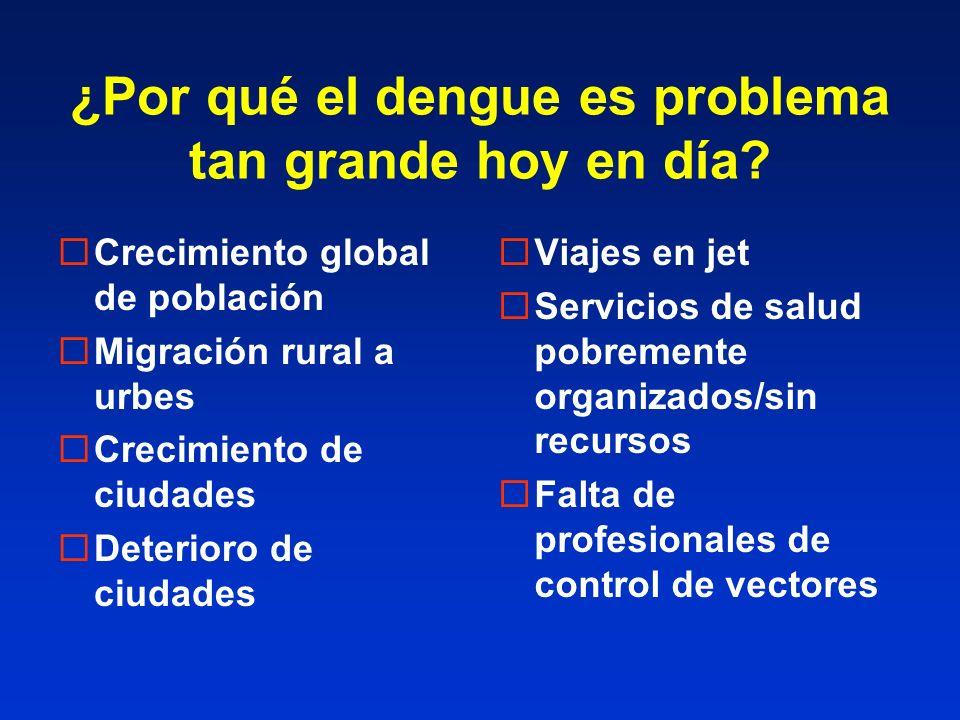 ¿Por qué el dengue es problema tan grande hoy en día