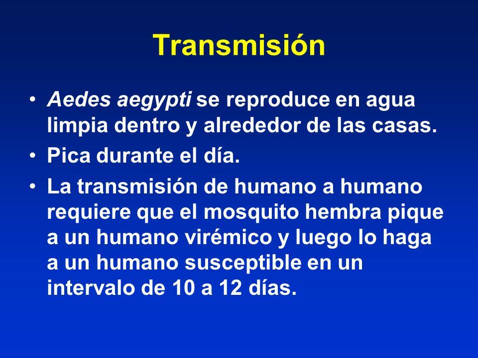 Transmisión Aedes aegypti se reproduce en agua limpia dentro y alrededor de las casas. Pica durante el día.