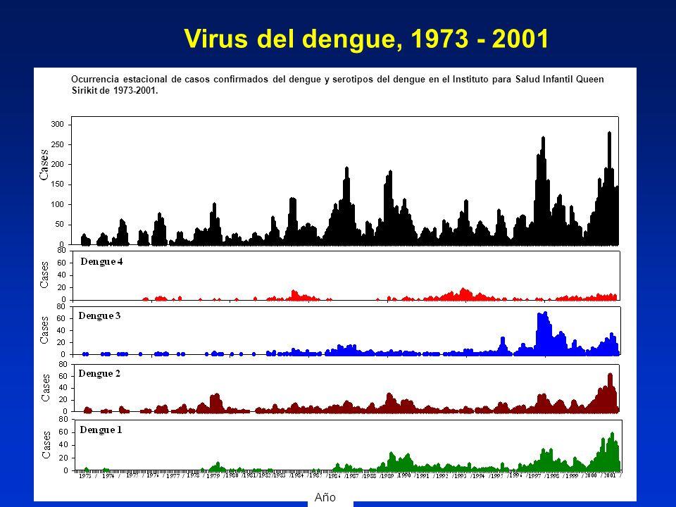Virus del dengue, 1973 - 2001