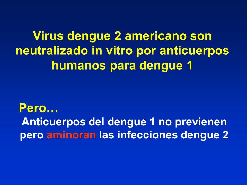 Virus dengue 2 americano son neutralizado in vitro por anticuerpos humanos para dengue 1