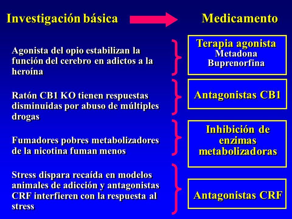 Inhibición de enzimas metabolizadoras