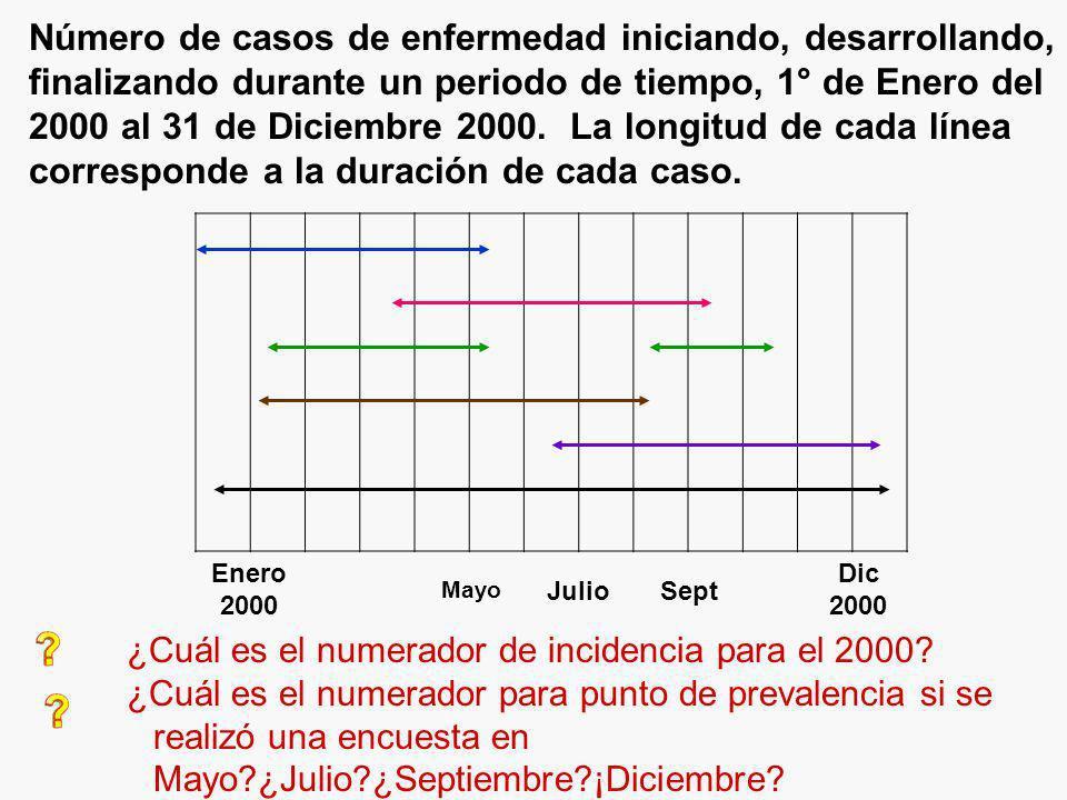 Número de casos de enfermedad iniciando, desarrollando, finalizando durante un periodo de tiempo, 1° de Enero del 2000 al 31 de Diciembre 2000. La longitud de cada línea corresponde a la duración de cada caso.