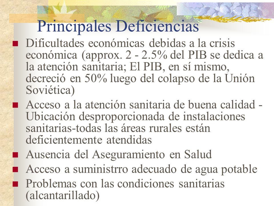 Principales Deficiencias