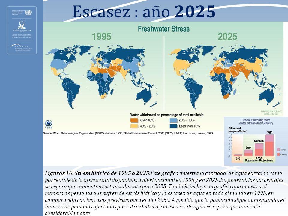 Escasez : año 2025