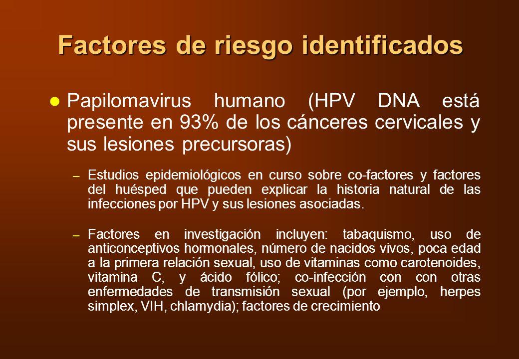 Factores de riesgo identificados