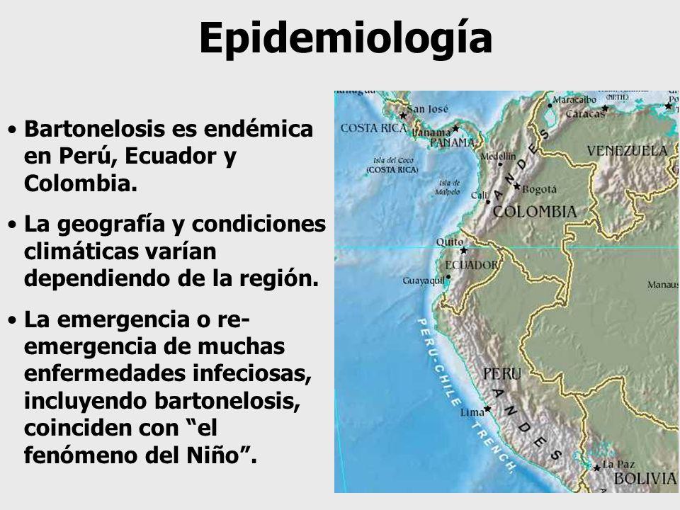 Epidemiología Bartonelosis es endémica en Perú, Ecuador y Colombia.