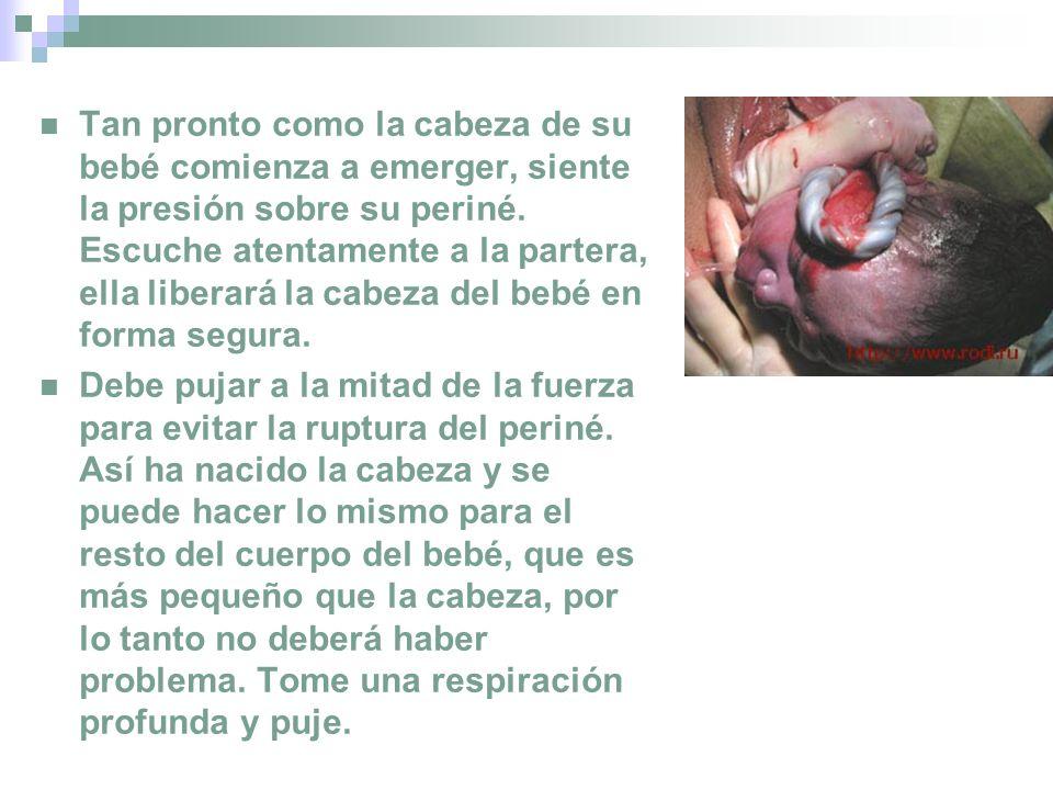 Tan pronto como la cabeza de su bebé comienza a emerger, siente la presión sobre su periné. Escuche atentamente a la partera, ella liberará la cabeza del bebé en forma segura.
