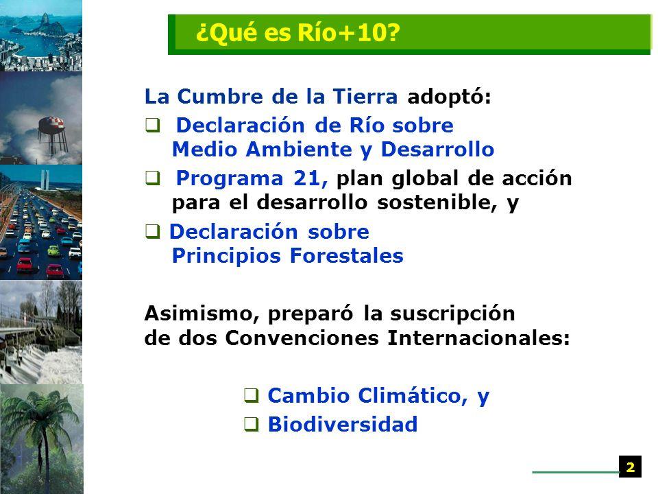 ¿Qué es Río+10 La Cumbre de la Tierra adoptó: