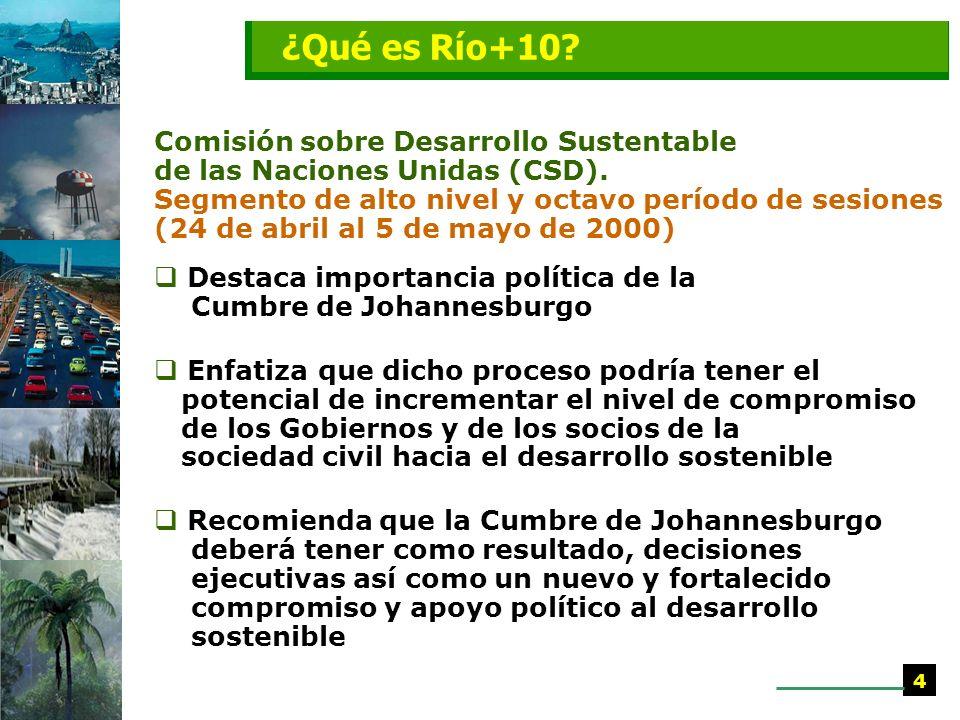 ¿Qué es Río+10