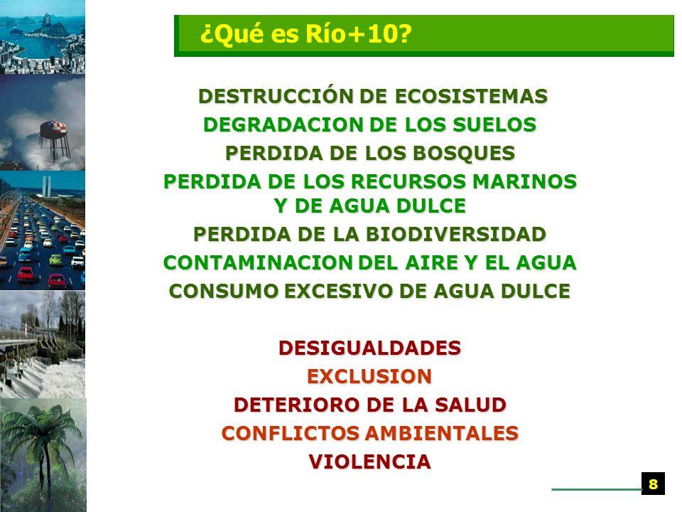 ¿Qué es Río+10 DESTRUCCIÓN DE ECOSISTEMAS DEGRADACION DE LOS SUELOS