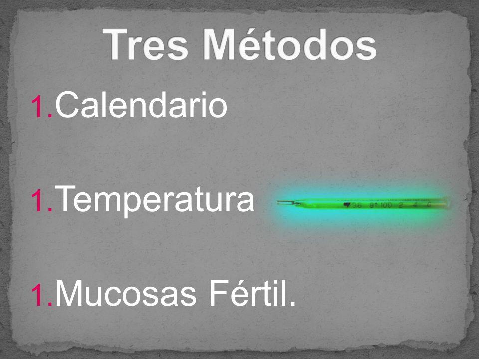 Tres Métodos Calendario Temperatura Mucosas Fértil.