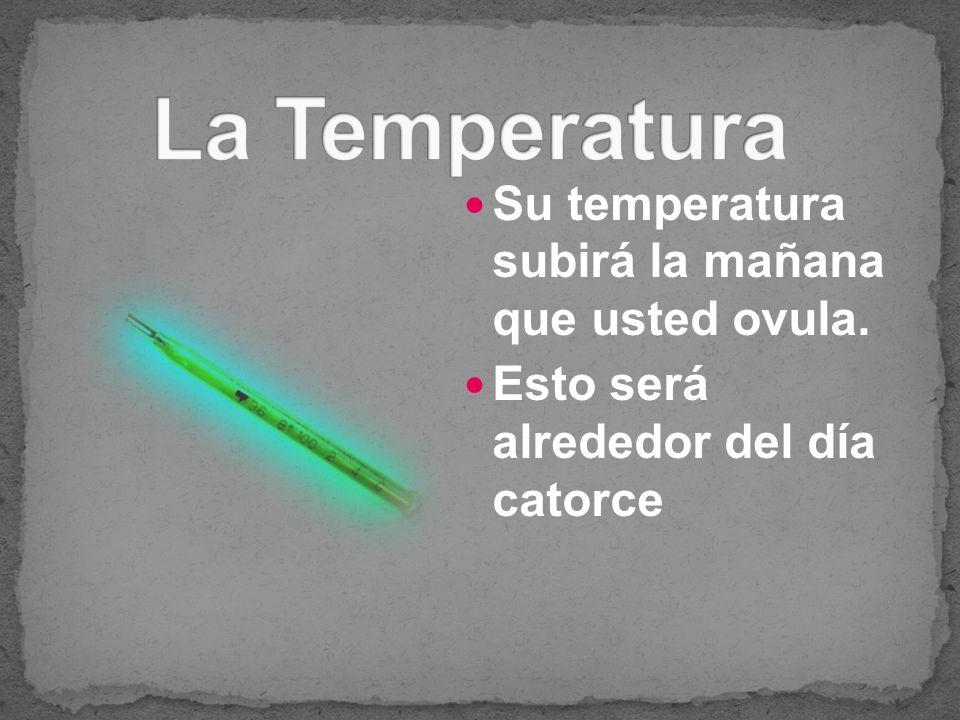 La Temperatura Su temperatura subirá la mañana que usted ovula.