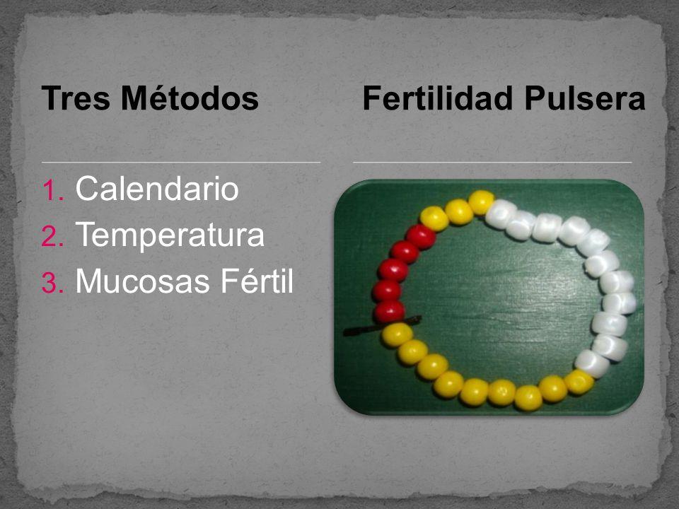 Tres Métodos Fertilidad Pulsera Calendario Temperatura Mucosas Fértil